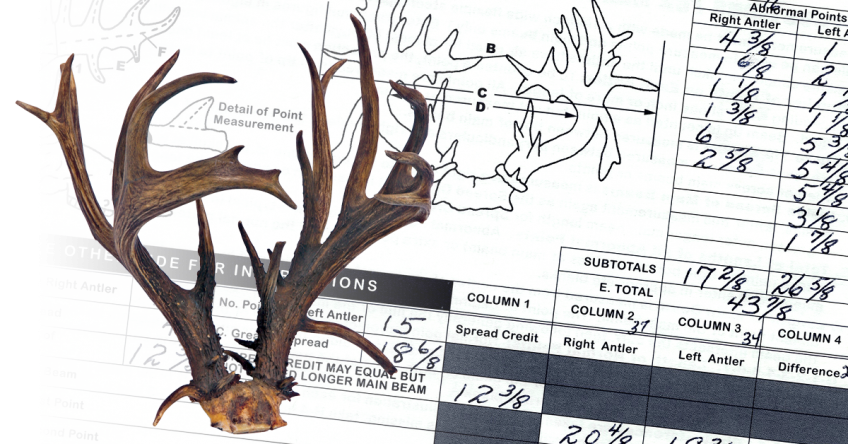 World's Record Coues' Whitetail - Non-Typical
