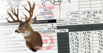 World's Record Columbia Blacktail Deer - Non-typical