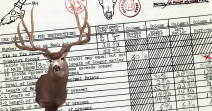 World's Record Mule Deer - Typical