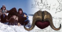World's Record Musk Ox - Tie Scott