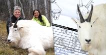 World's Record Rocky Mountain Goat