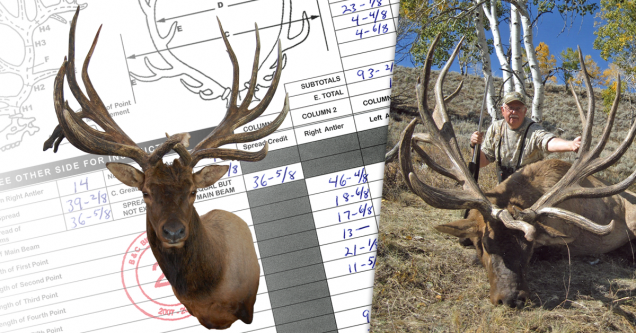 World's Record American Elk - Non-ypical
