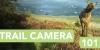 trailcamera_header2.jpg