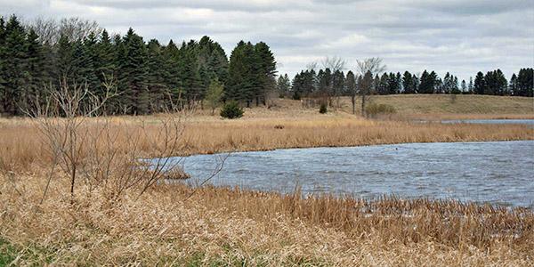 3-30x30-wetlands-mnwetlandbuffer-credit_usda-2.jpg