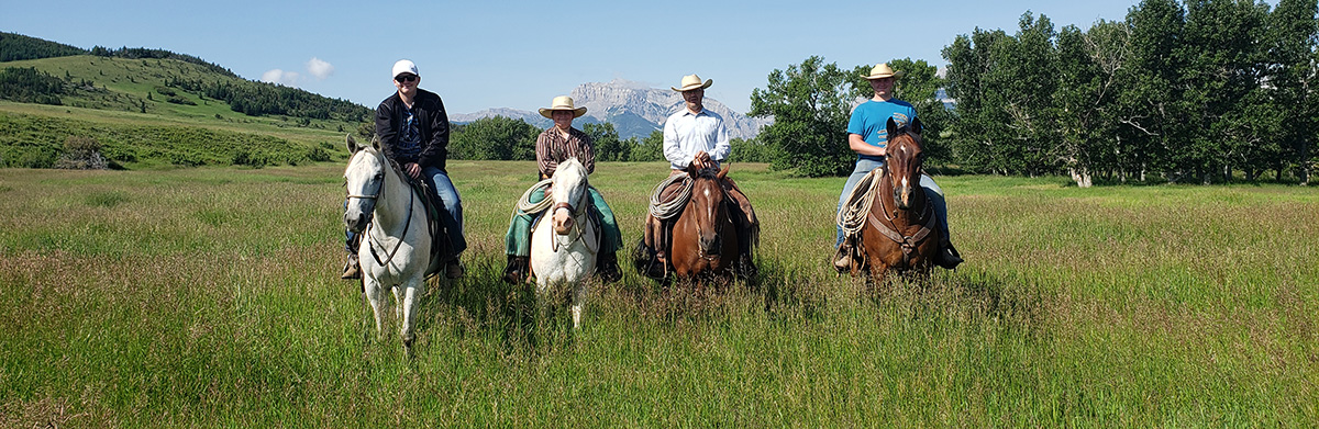 briggsfamilyhorses.jpg
