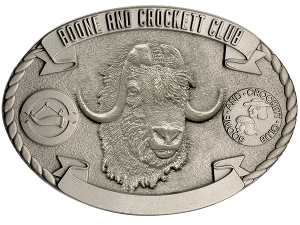 buckle-muskox-600px.png