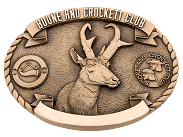 buckle-pronghorn-600px.png