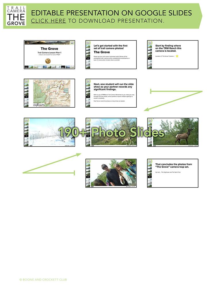 lessonplanthumbnail-grove-1.jpg