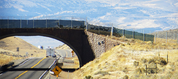 news-infrastructure-crossing-08-10-2021.jpg