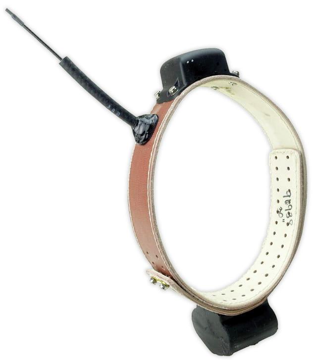 tbspotlight-ats-collar.jpg